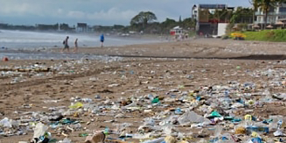 Wwf: Il Mediterraneo invaso dalla plastica